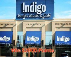 Indigo Plum Rewards Contest
