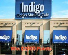 Indigo Plum Rewards Contest