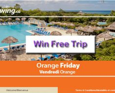 Sunwing Orange Friday Survey