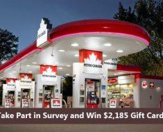 Petro-Canada Hero Survey